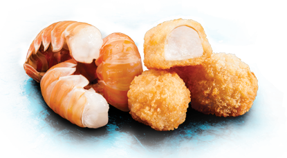 new-scampi
